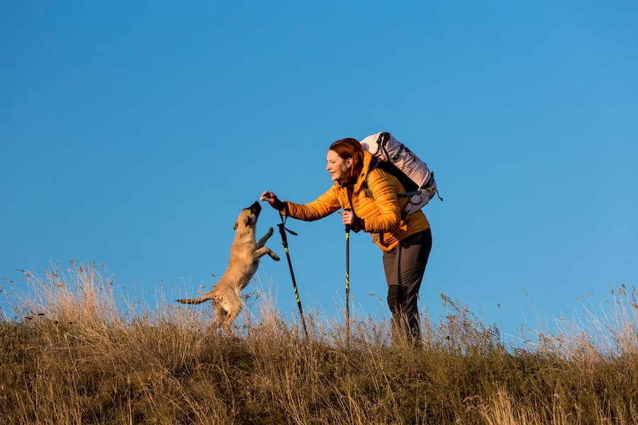 Lady with her dog on the trail hiking and enjoying the outdoors - Can You Thru-Hike With A Dog
