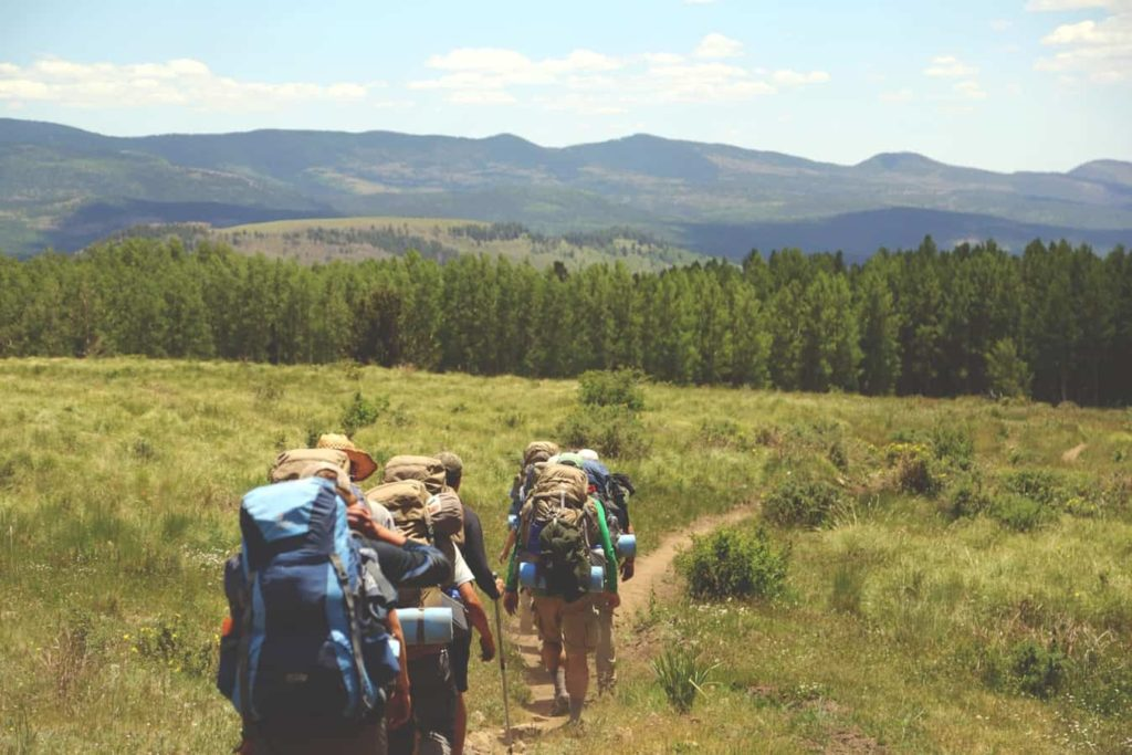 Hikers hiking into the field heading for the forest - What is Backpacking Base Weight