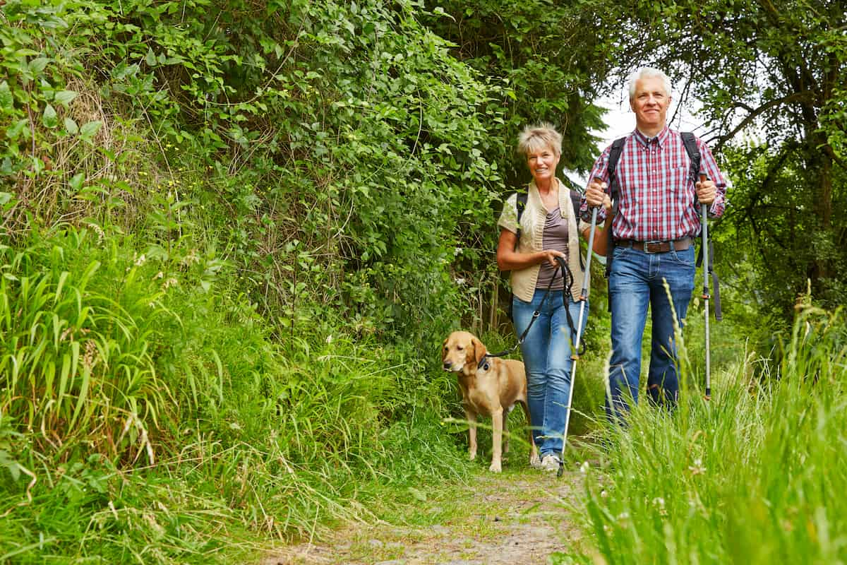 Happy senior couple walking with dog on a hiking trail
